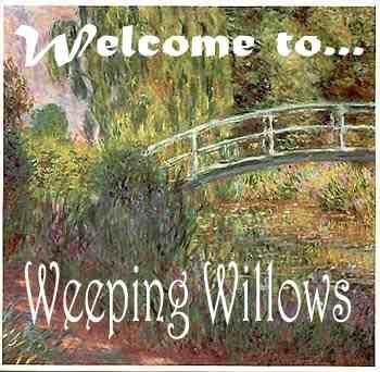 "Welcome to ""Weeping Willows""... ENTER HERE."